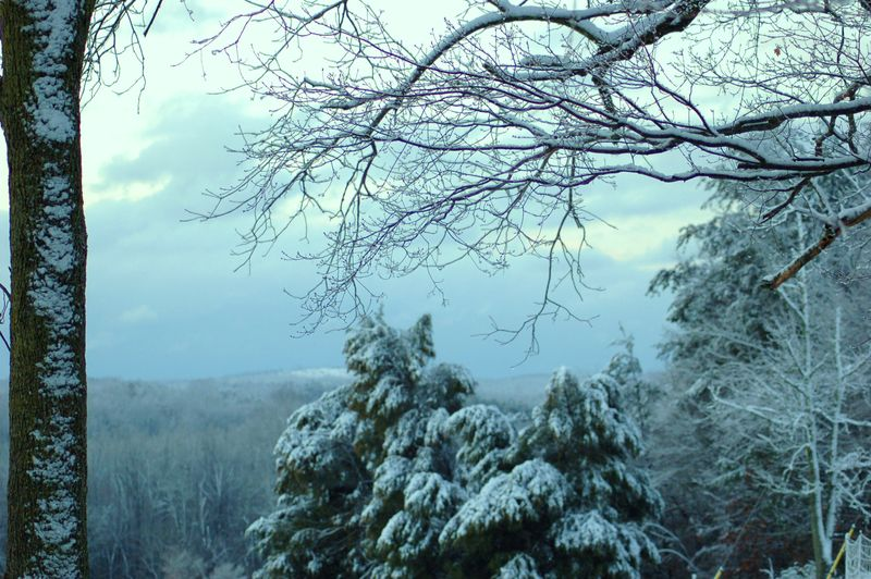 Snow on Uwharrie Mountains