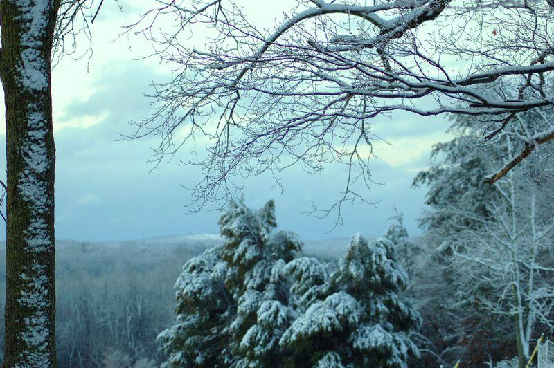Snow on Uwharrie Mountains