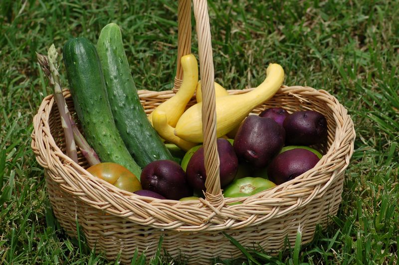 Vegetables from the home garden